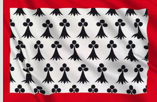 Bandera Lemosin