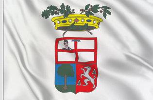 Bandera Mantua Provincia