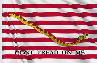 Bandera United States Naval Jack