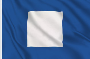 Bandera Letra P