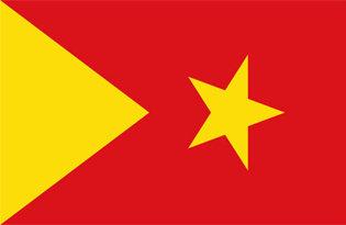Flag Tigray