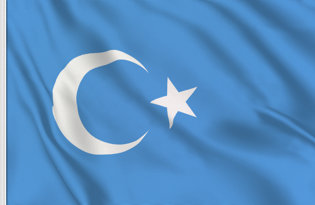 Flag East Turkestan Republic