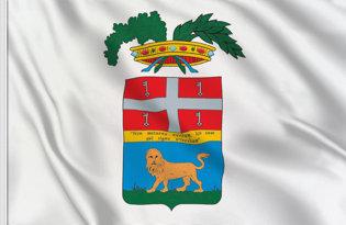 Bandera Viterbo Provincia