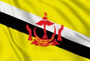 Flag Brunei