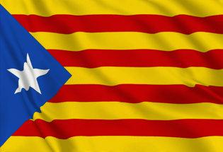 Flag Estelada