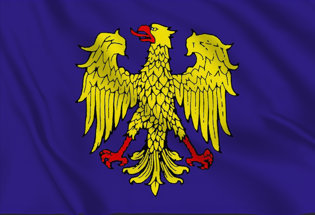 Flag Friul Eagle