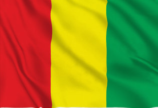 Flag Guinea