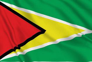 Bandera Guayana