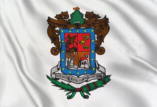 Flag Michoacan