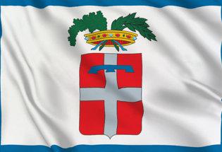 Turin Province Flag