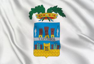 Bandera Treviso Provincia