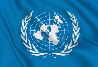 Bandera ONU