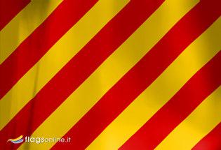 Bandera Letra Y