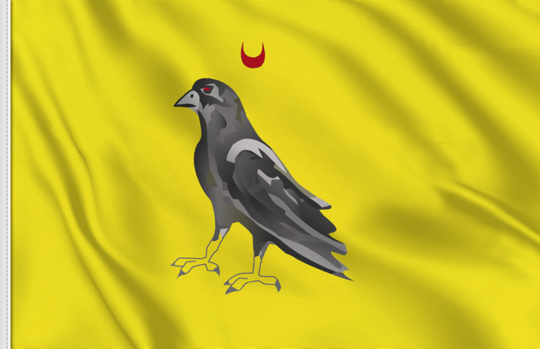 Barony of Caux flag