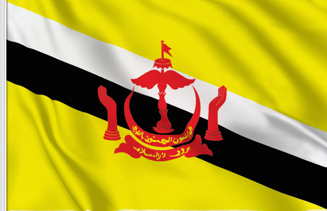 flag sticker of Brunei