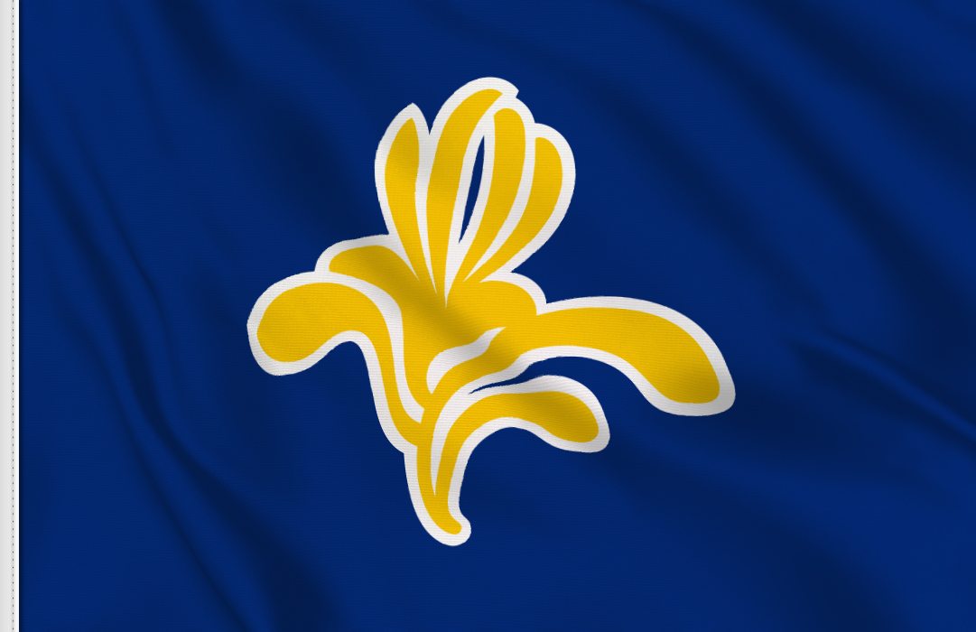Region de Bruselas-Capital flag