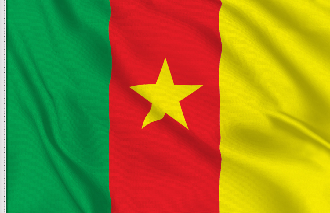 flag sticker of Cameroon