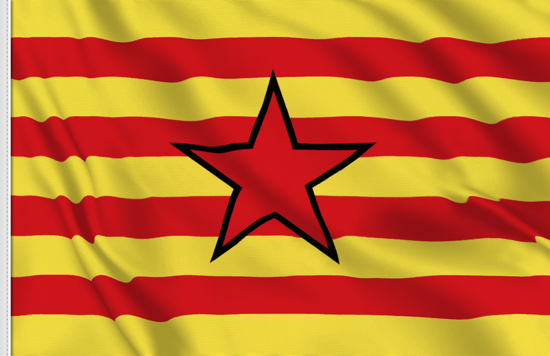 flag sticker of Estelada aragonesa