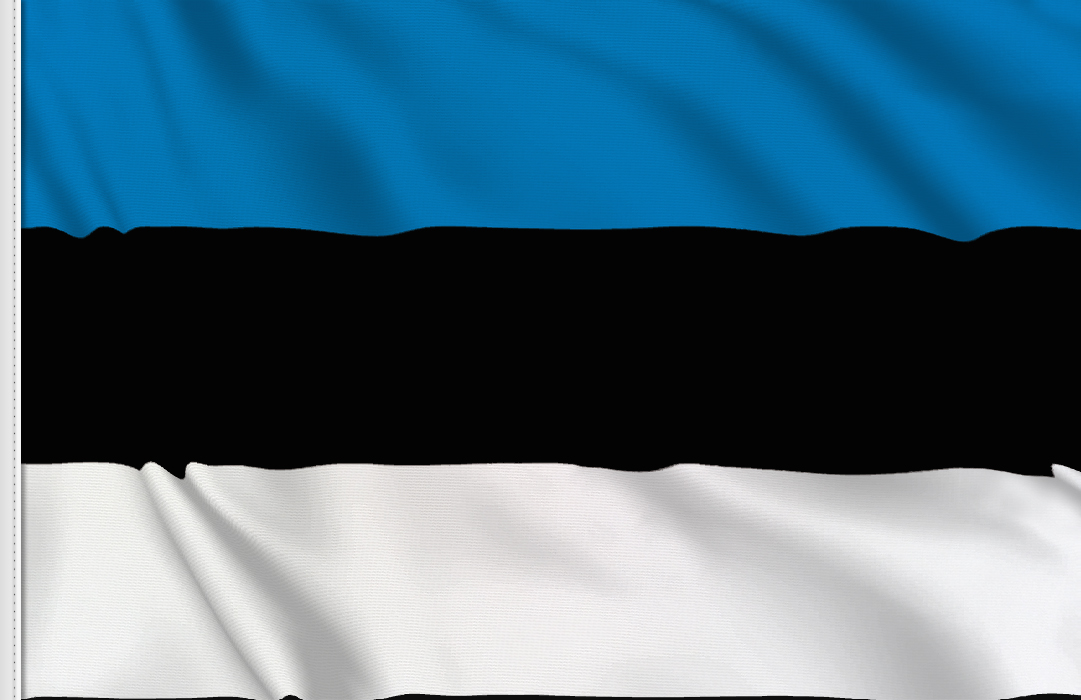 flag sticker of Estonia