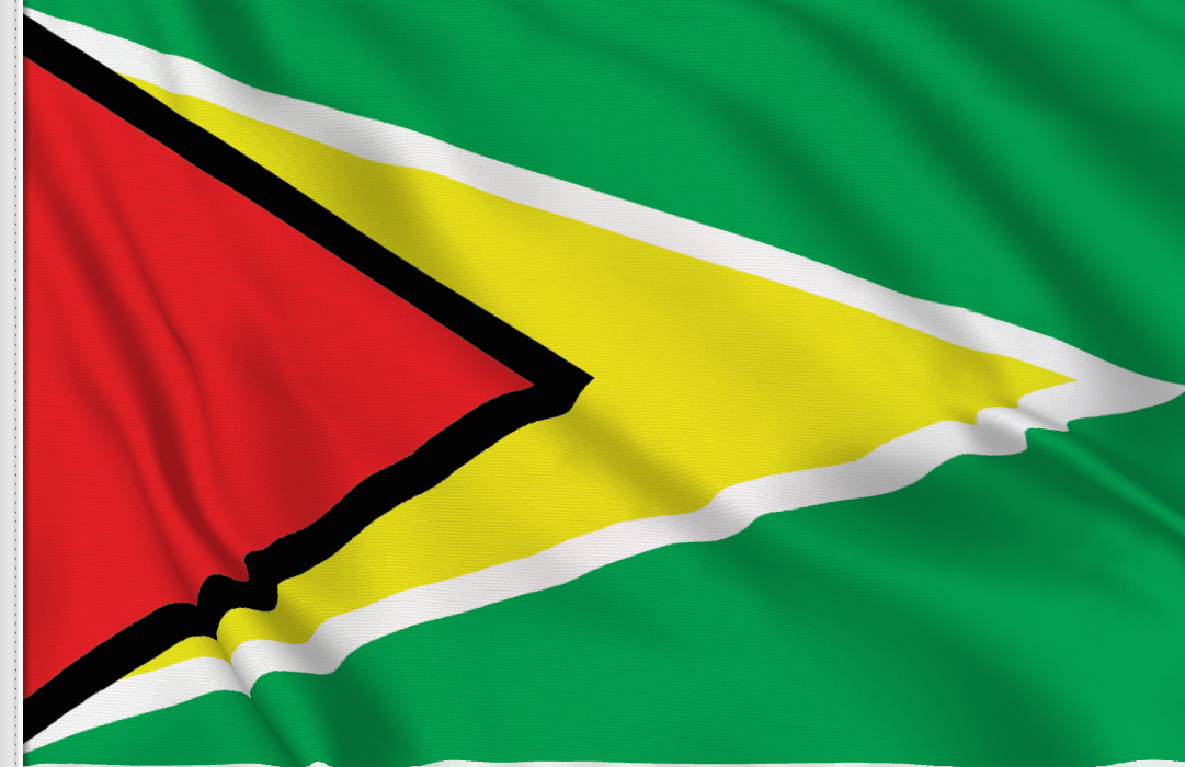 flag sticker of Guyana