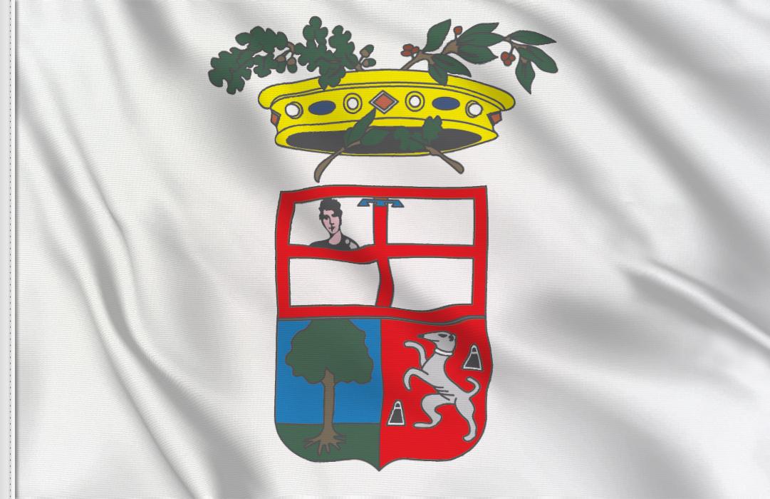 Mantua Province flag