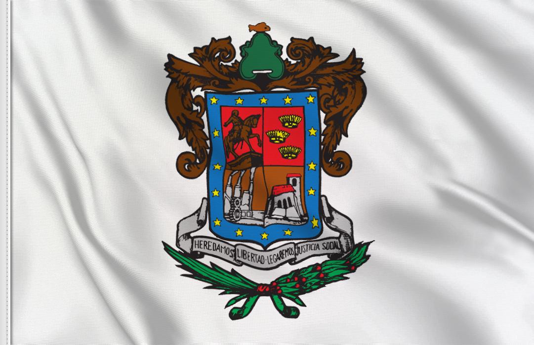Michoacan flag