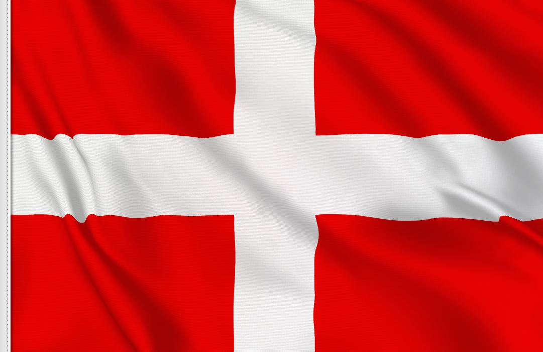 Novara flag