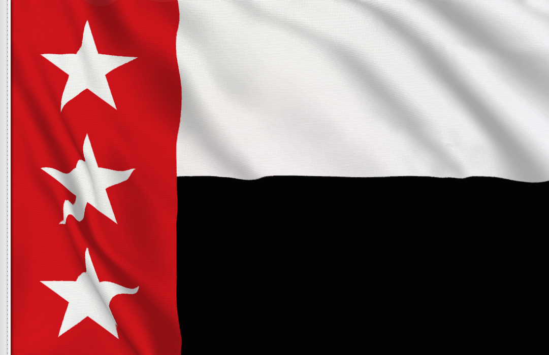 Rio Grande Republic flag