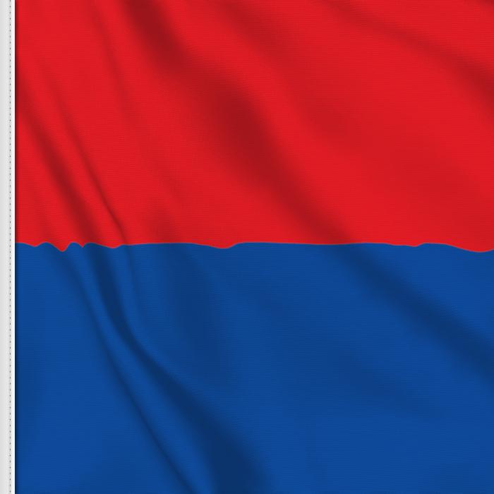 Ticino flag