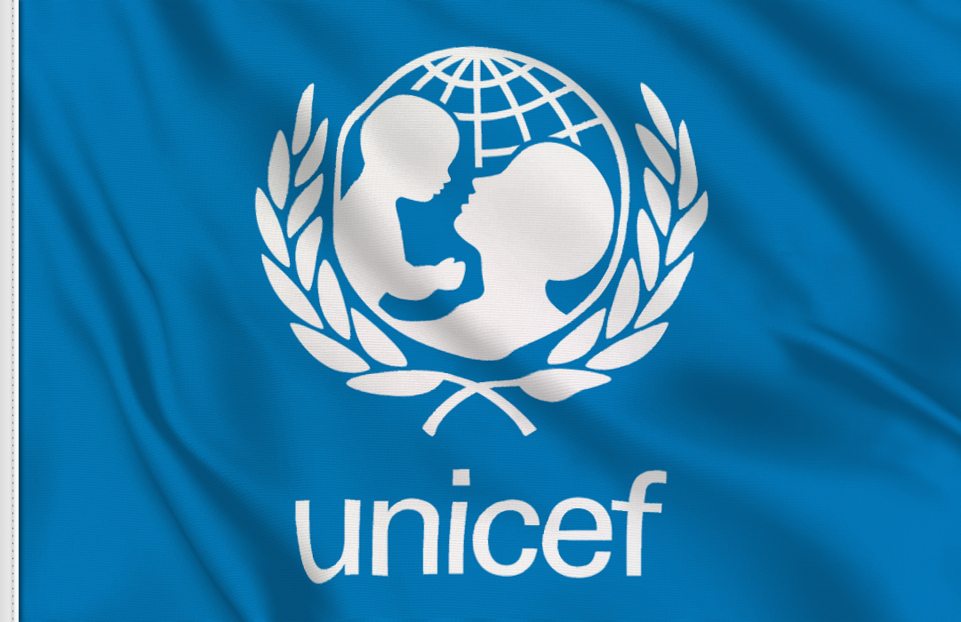 Unicef table flag