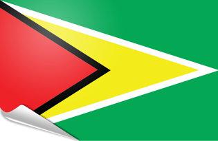Adhesive flag Guyana