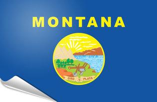 Adhesive flag Montana