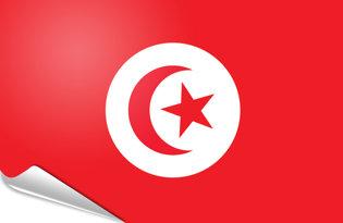 Adhesive flag Tunisia