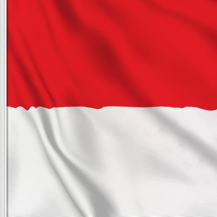 Solothurn flag