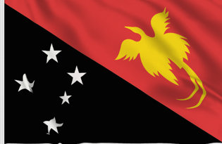 New Guinea Table Flag