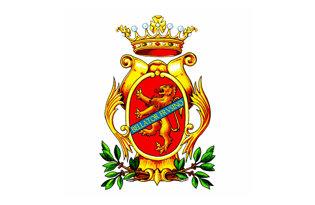 Bandera Frosinone