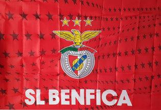Flag Official Sport Lisboa e Benfica