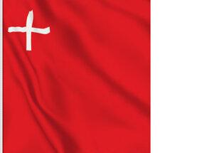 Bandera Schwyz